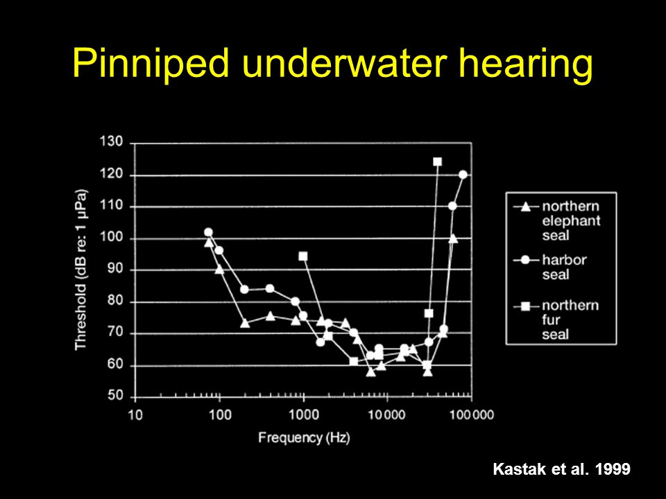 Pinniped underwater hearing Kastak et al. 1999