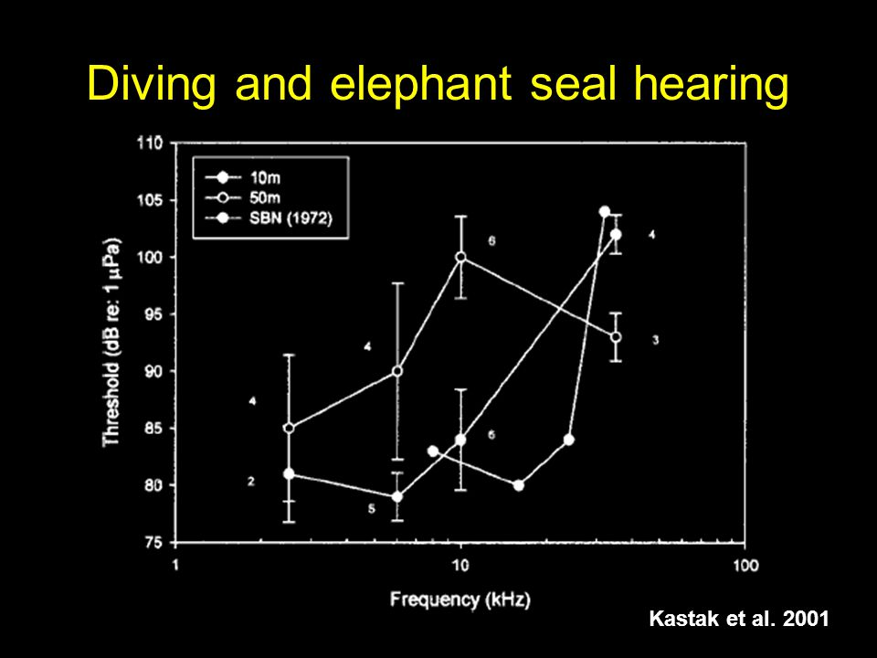Diving and elephant seal hearing Kastak et al. 2001