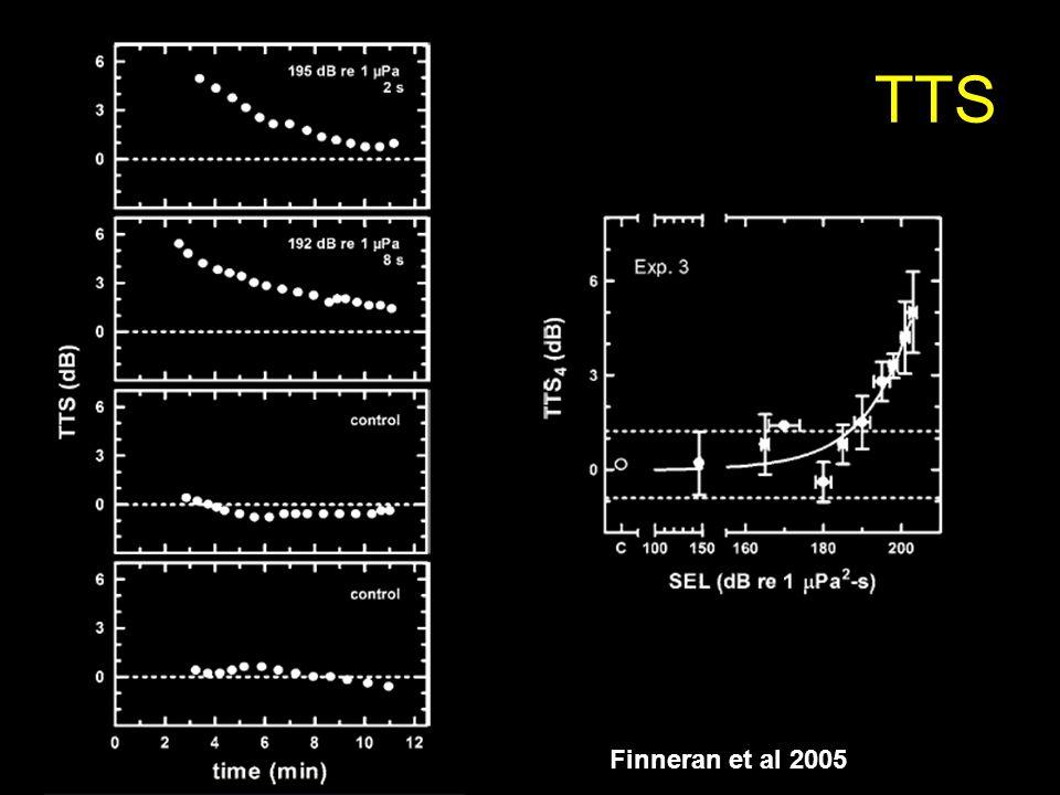 TTS Finneran et al 2005