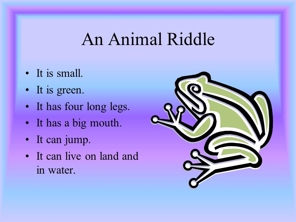 An Animal Riddle It is small. It has a long beak. It has two wings. It can fly. It can't swim.