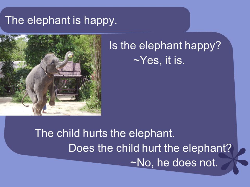 The elephant is happy. Is the elephant happy. ~Yes, it is.