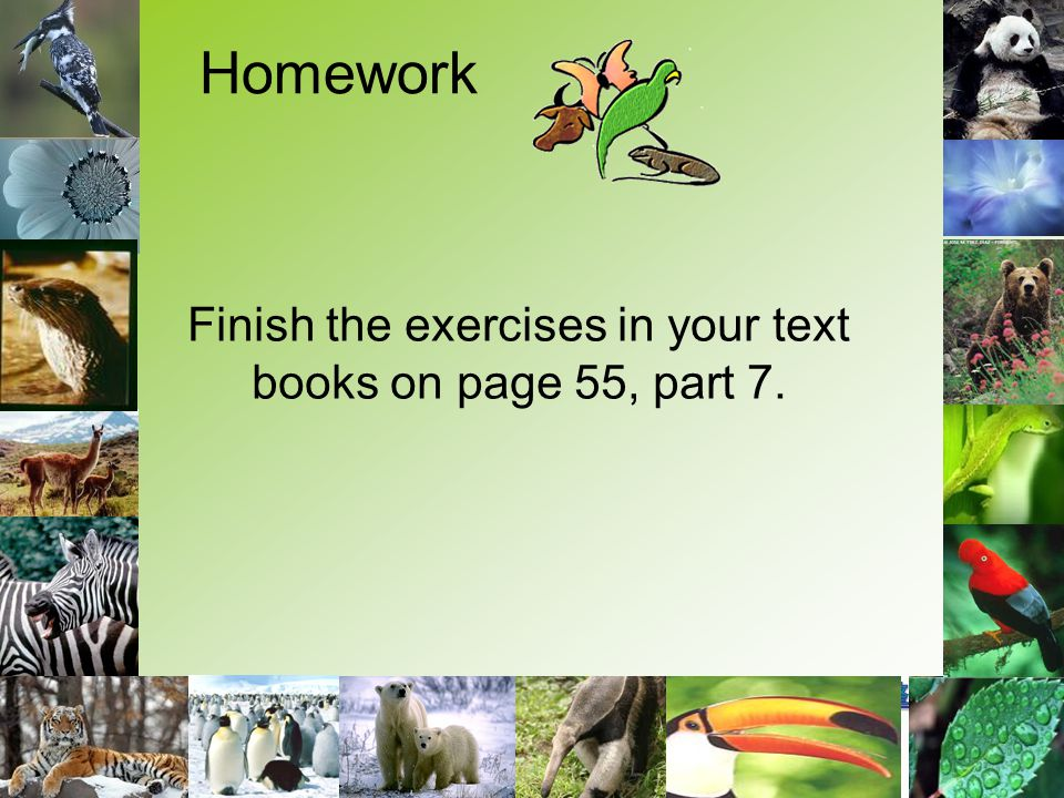 Finish the exercises in your text books on page 55, part 7. Homework