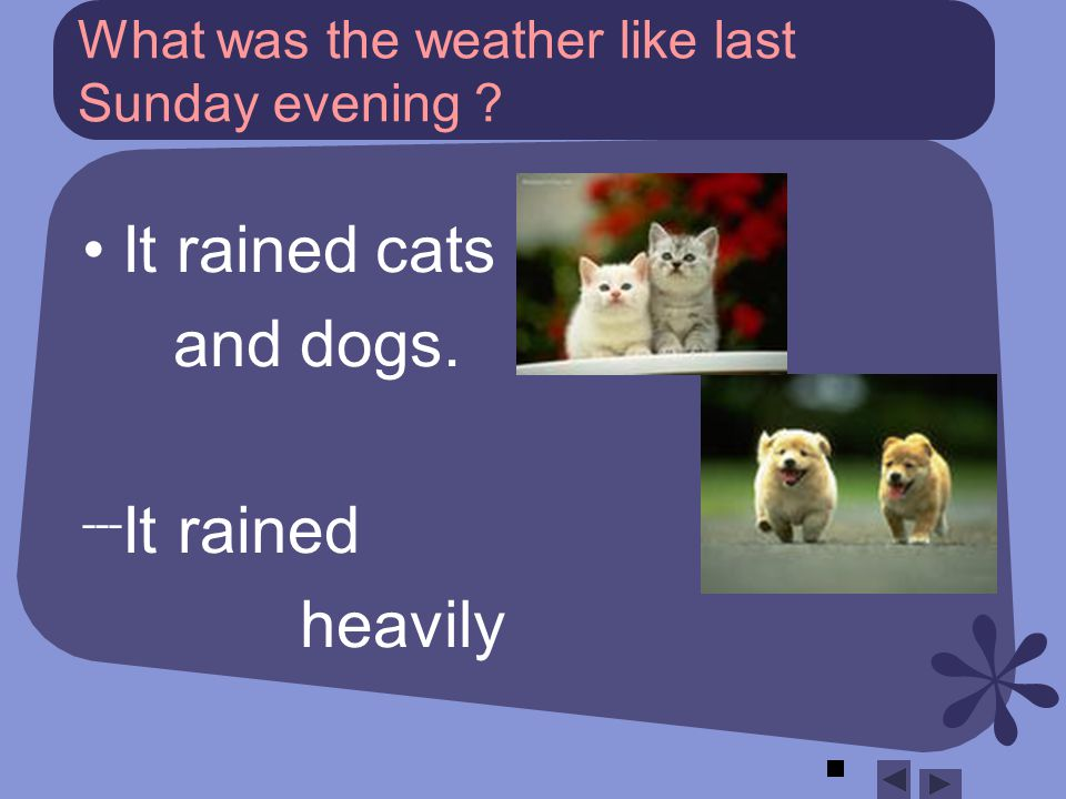 What was the weather like last Sunday evening It rained cats and dogs. ˉˉˉ It rained heavily