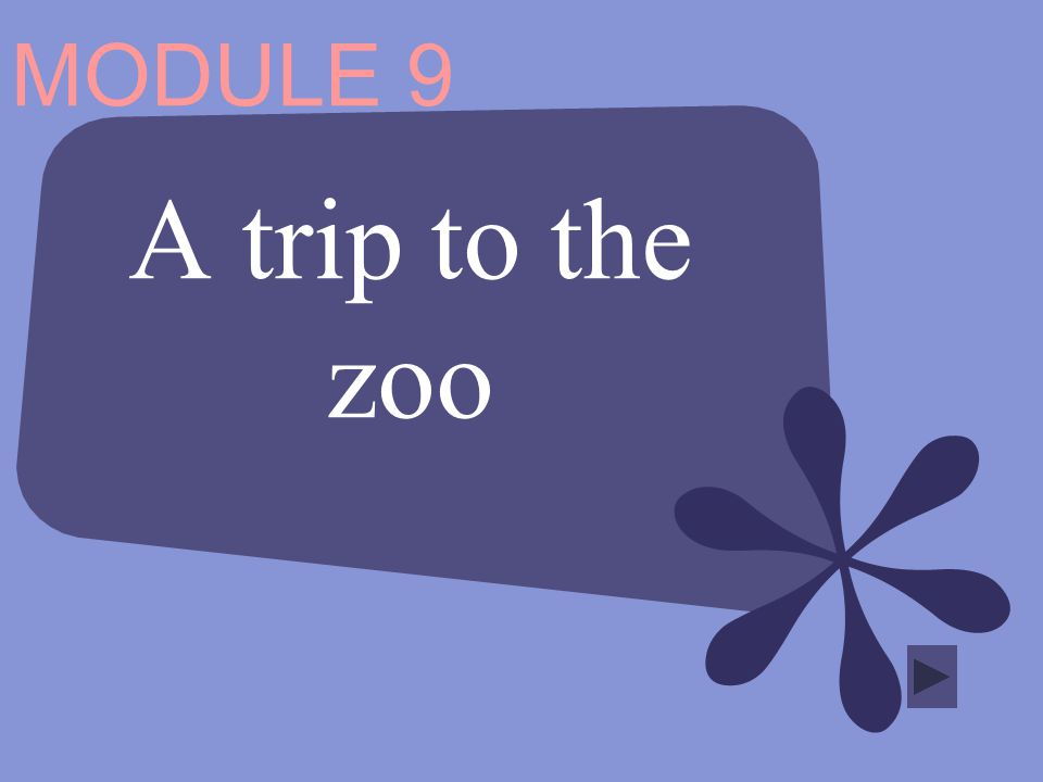 MODULE 9 A trip to the zoo