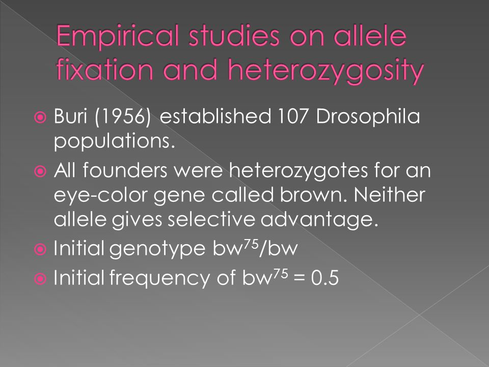  Buri (1956) established 107 Drosophila populations.  All founders were heterozygotes for an eye-color gene called brown. Neither allele gives selec