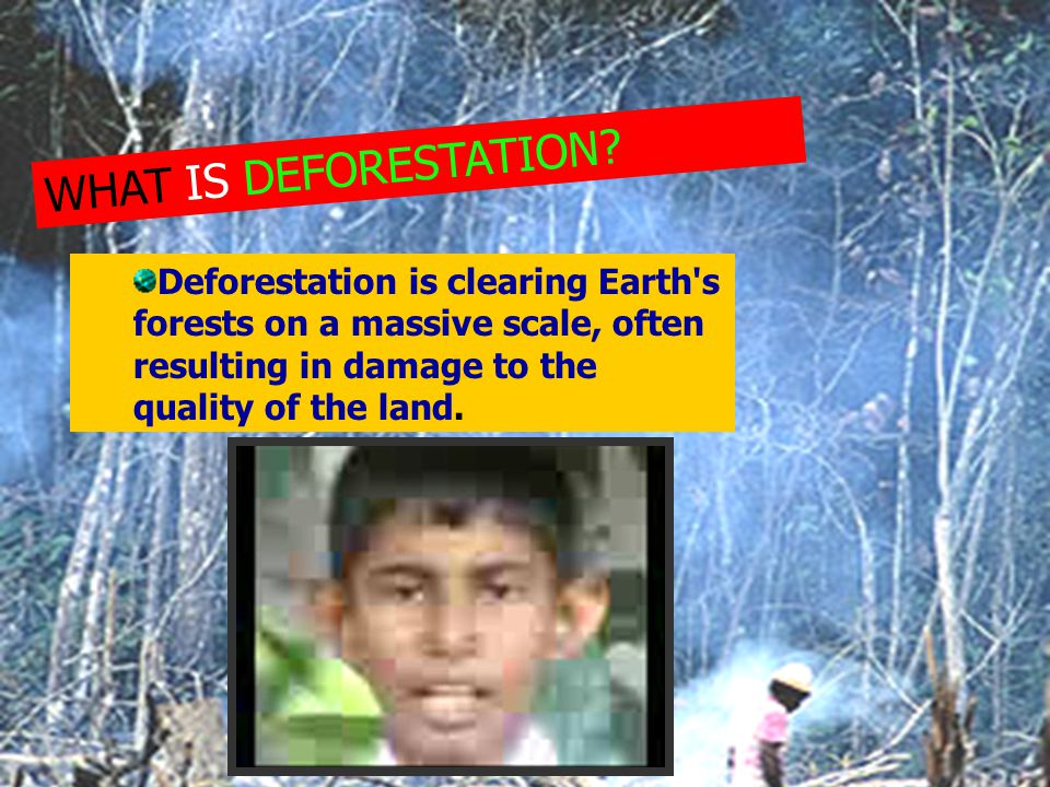 WHAT IS DEFORESTATION? Deforestation is clearing Earth's forests on a massive scale, often resulting in damage to the quality of the land.