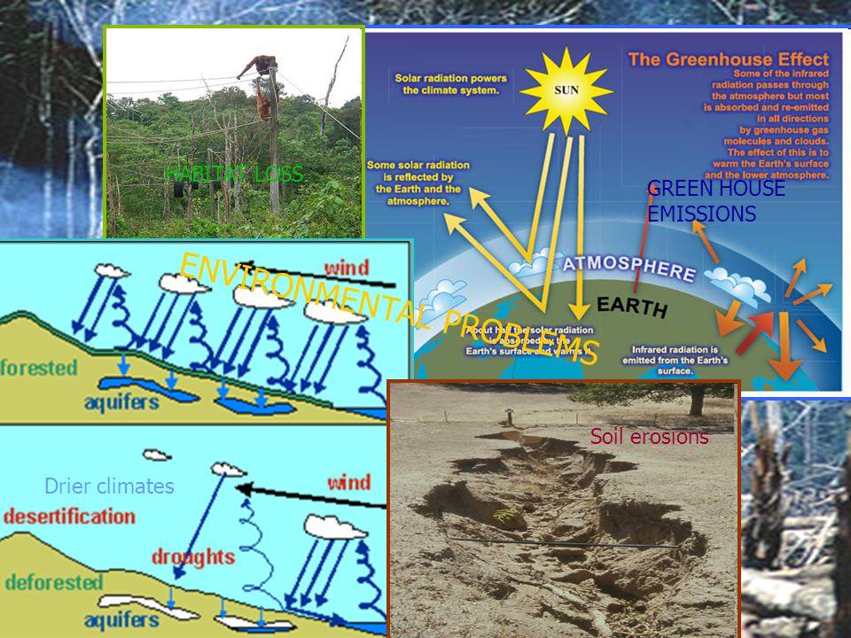 HABITAT LOSS GREEN HOUSE EMISSIONS Drier climates Soil erosions ENVIRONMENTAL PROBLEMS