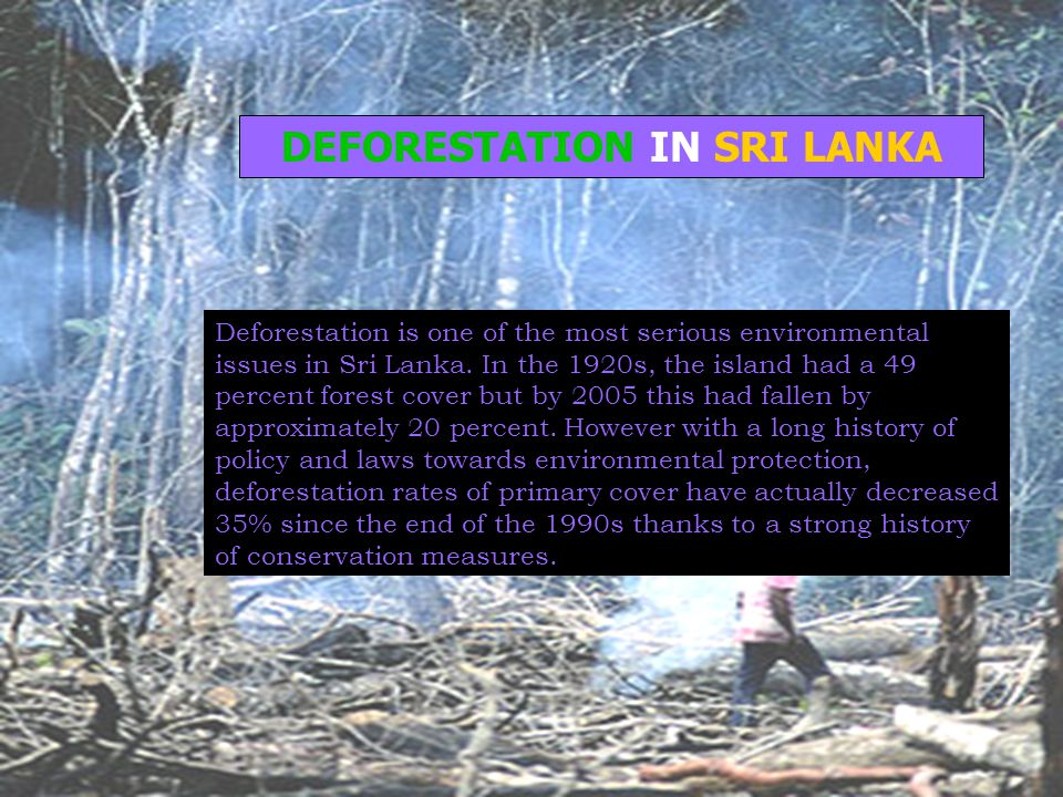 DEFORESTATION IN SRI LANKA Deforestation is one of the most serious environmental issues in Sri Lanka. In the 1920s, the island had a 49 percent fores