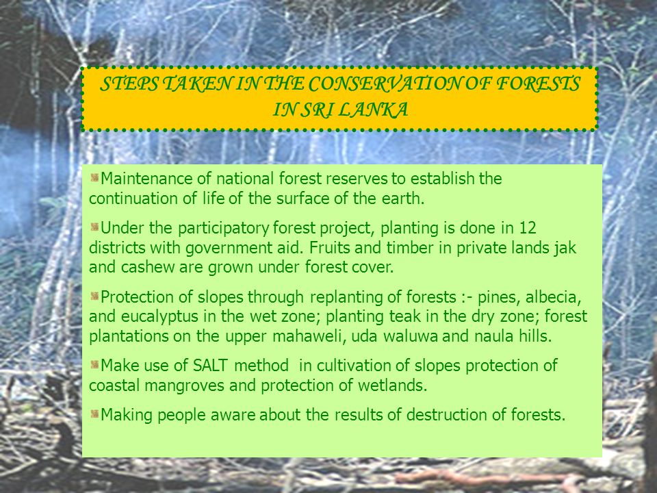 STEPS TAKEN IN THE CONSERVATION OF FORESTS IN SRI LANKA Maintenance of national forest reserves to establish the continuation of life of the surface o