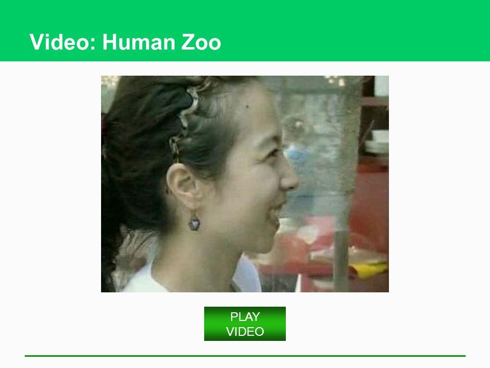 Video: Human Zoo PLAY VIDEO