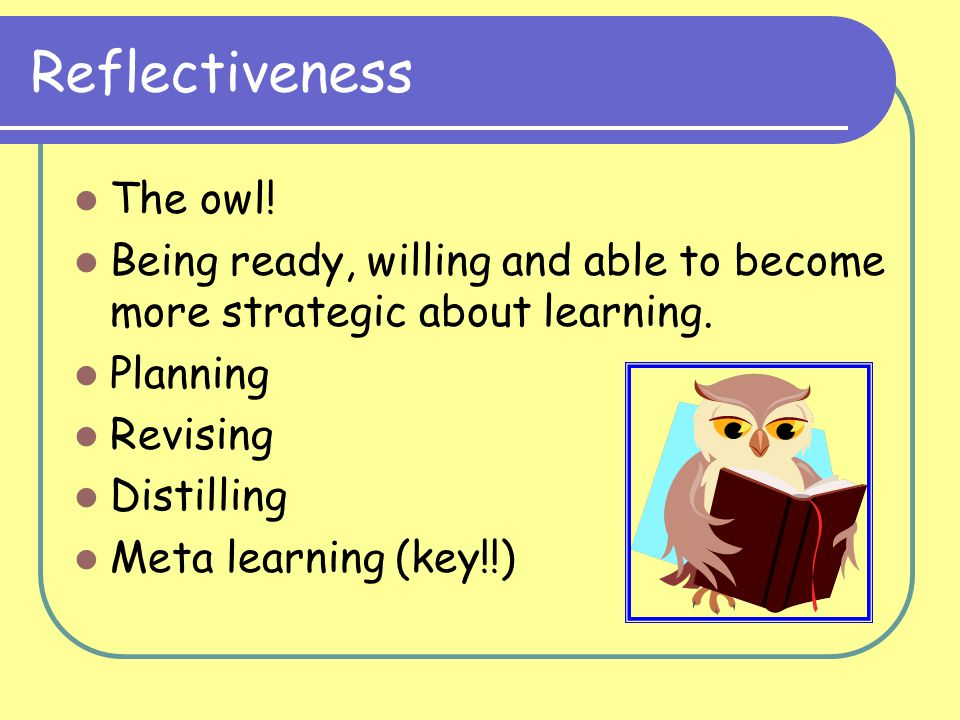 Reflectiveness The owl.Being ready, willing and able to become more strategic about learning.