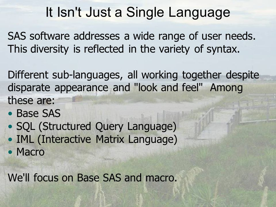 It Isn t Just a Single Language SAS software addresses a wide range of user needs.
