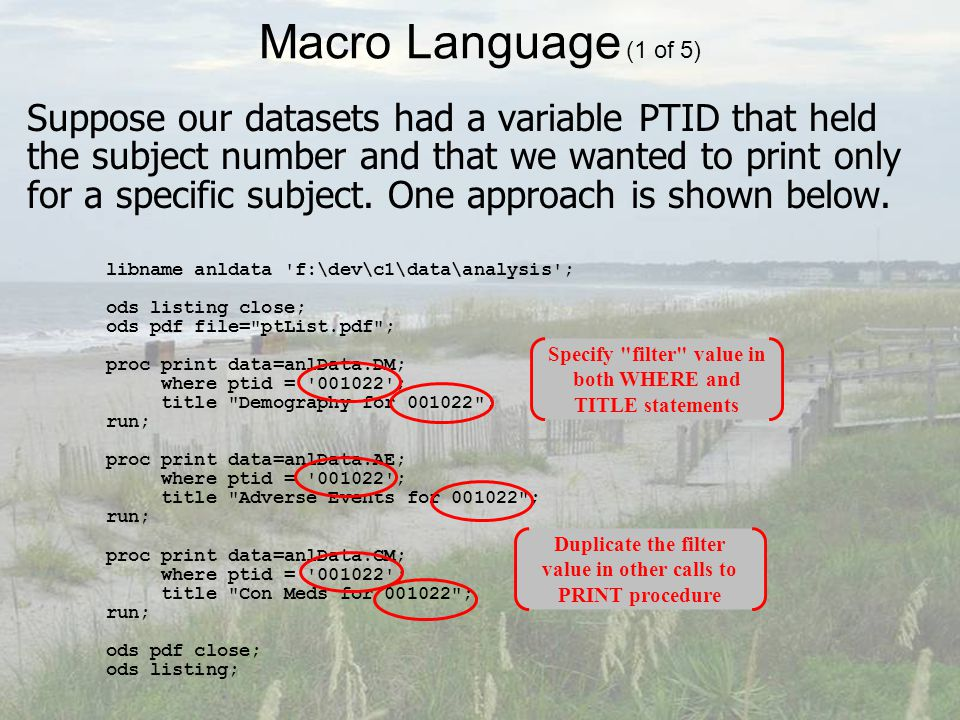 Macro Language (1 of 5) Suppose our datasets had a variable PTID that held the subject number and that we wanted to print only for a specific subject.