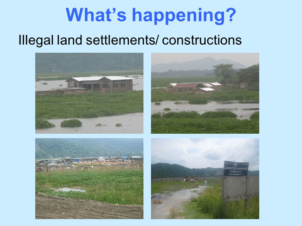 Illegal land settlements/ constructions What's happening?
