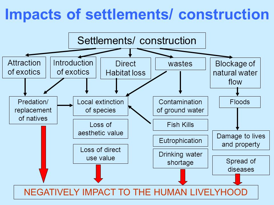 Impacts of settlements/ construction Settlements/ construction Blockage of natural water flow Contamination of ground water Direct Habitat loss wastes