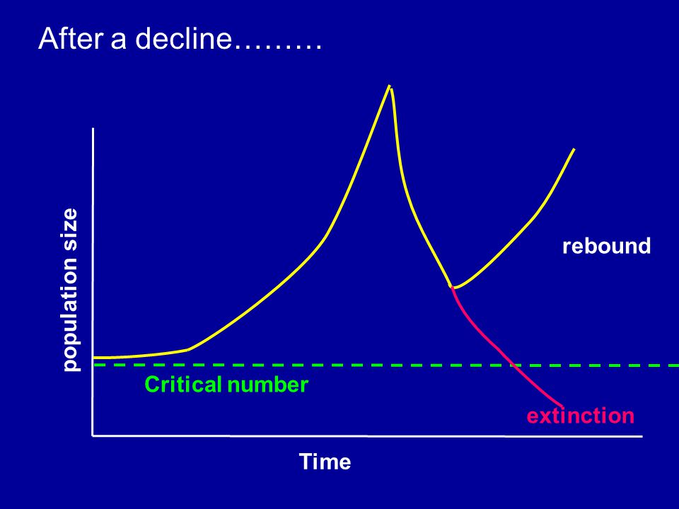 Time population size Critical number After a decline……… rebound extinction