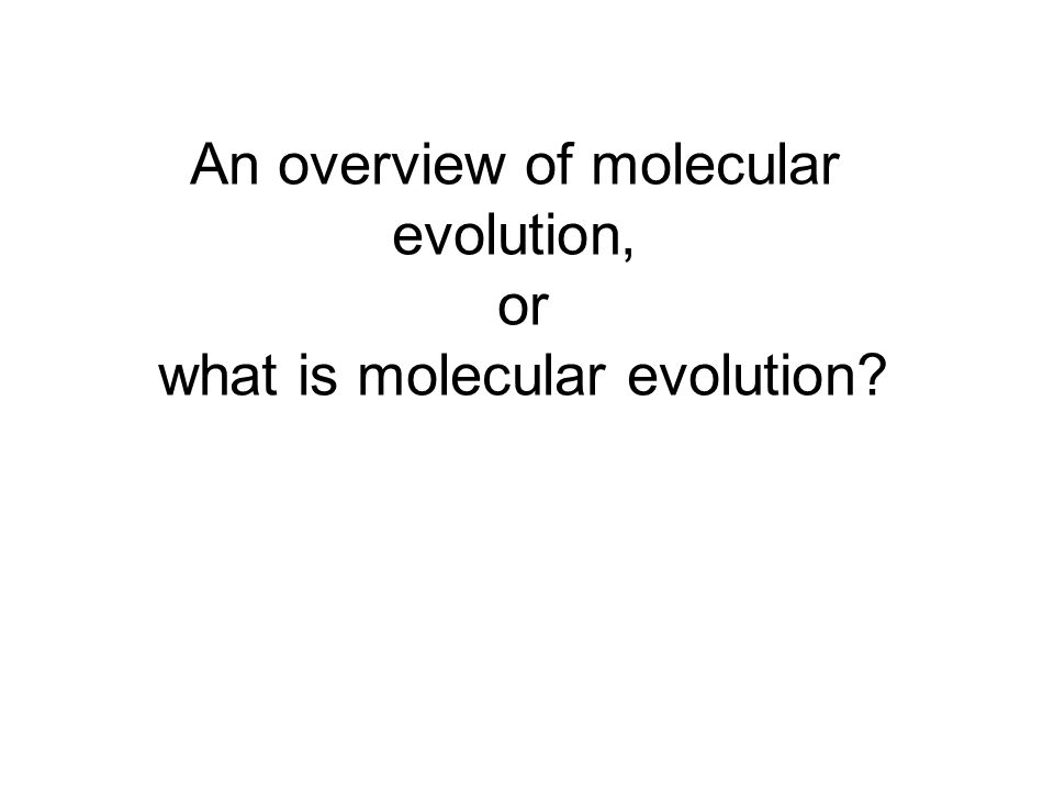 An overview of molecular evolution, or what is molecular evolution