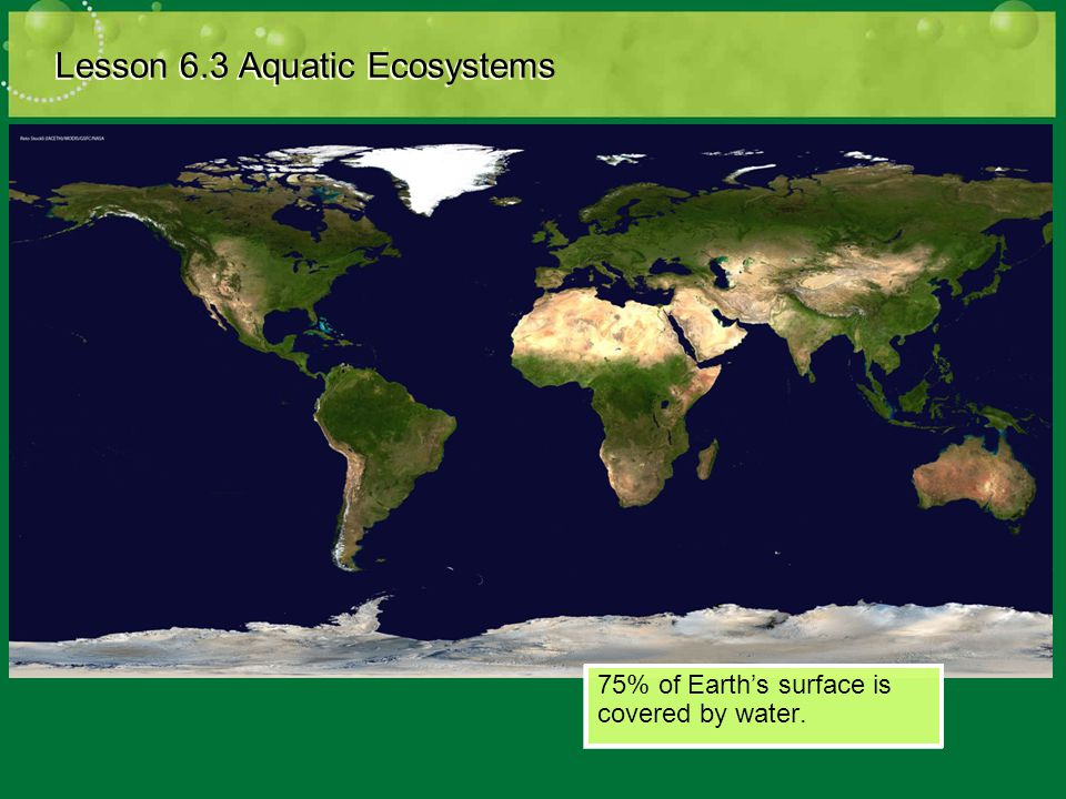 Describing Aquatic Ecosystems Lesson 6.3 Aquatic Ecosystems Salinity: the amount of dissolved salt present in water.