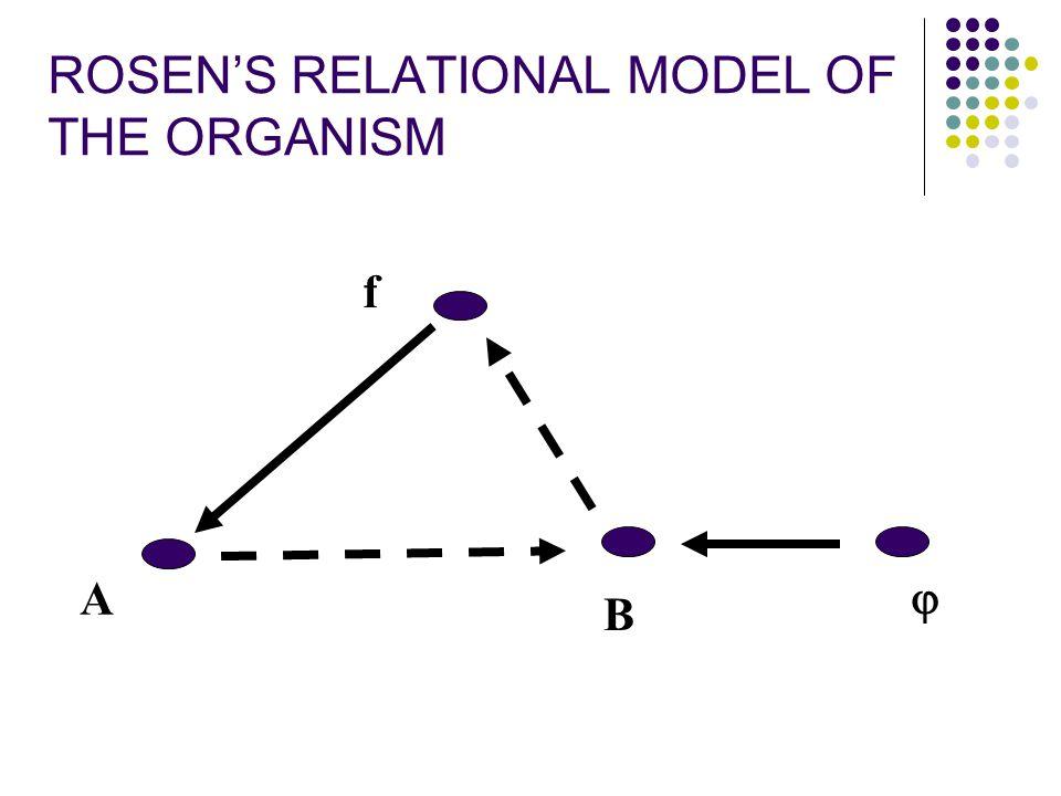 f A B  ROSEN'S RELATIONAL MODEL OF THE ORGANISM