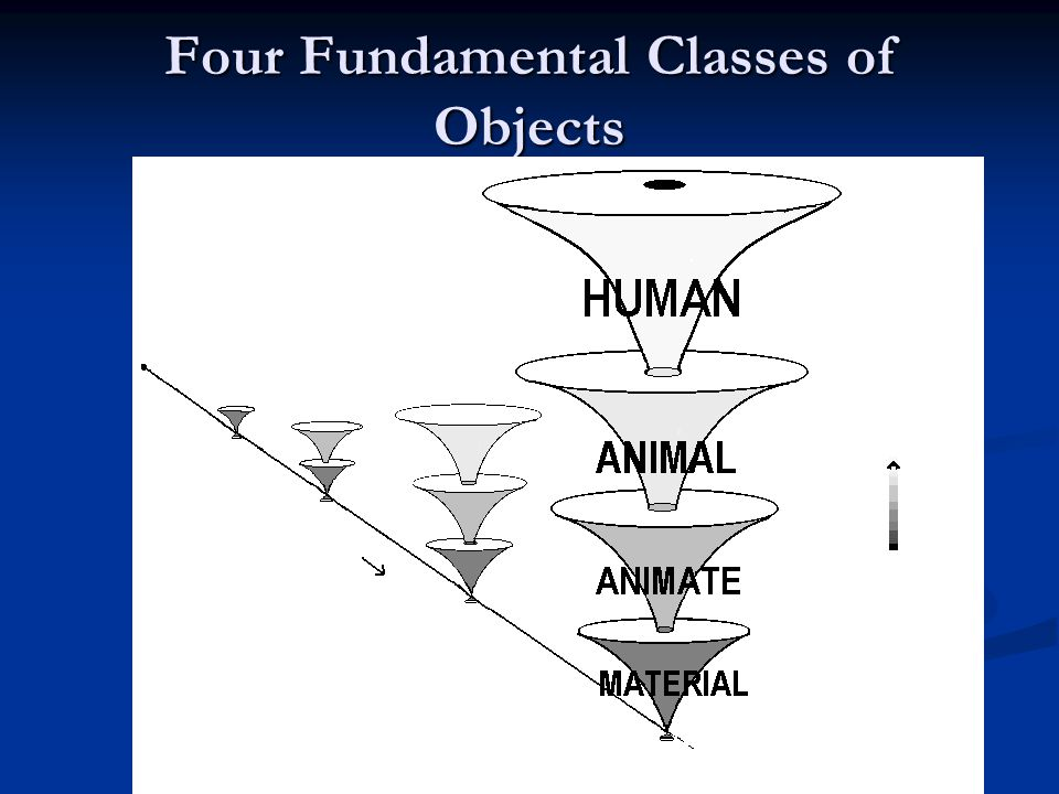 Four Fundamental Classes of Objects