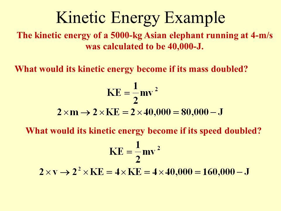Kinetic Energy Example Find the kinetic energy of a 5000-kg Asian elephant running at 4-m/s. How could the elephant increase its kinetic energy? The e