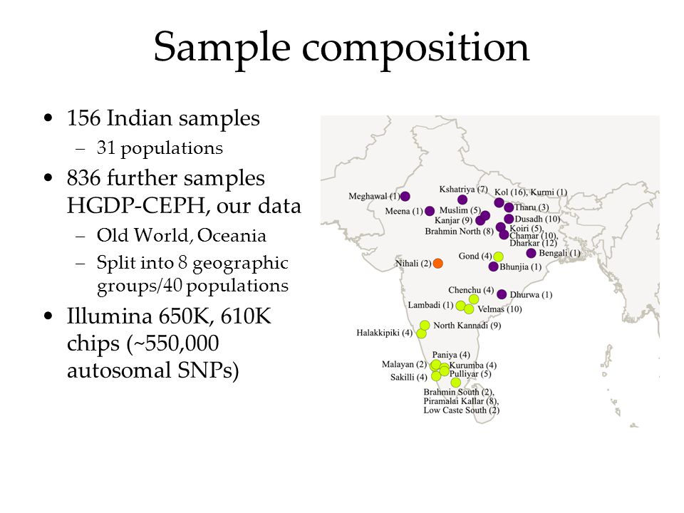 Sample composition 156 Indian samples –31 populations 836 further samples HGDP-CEPH, our data –Old World, Oceania –Split into 8 geographic groups/40 p