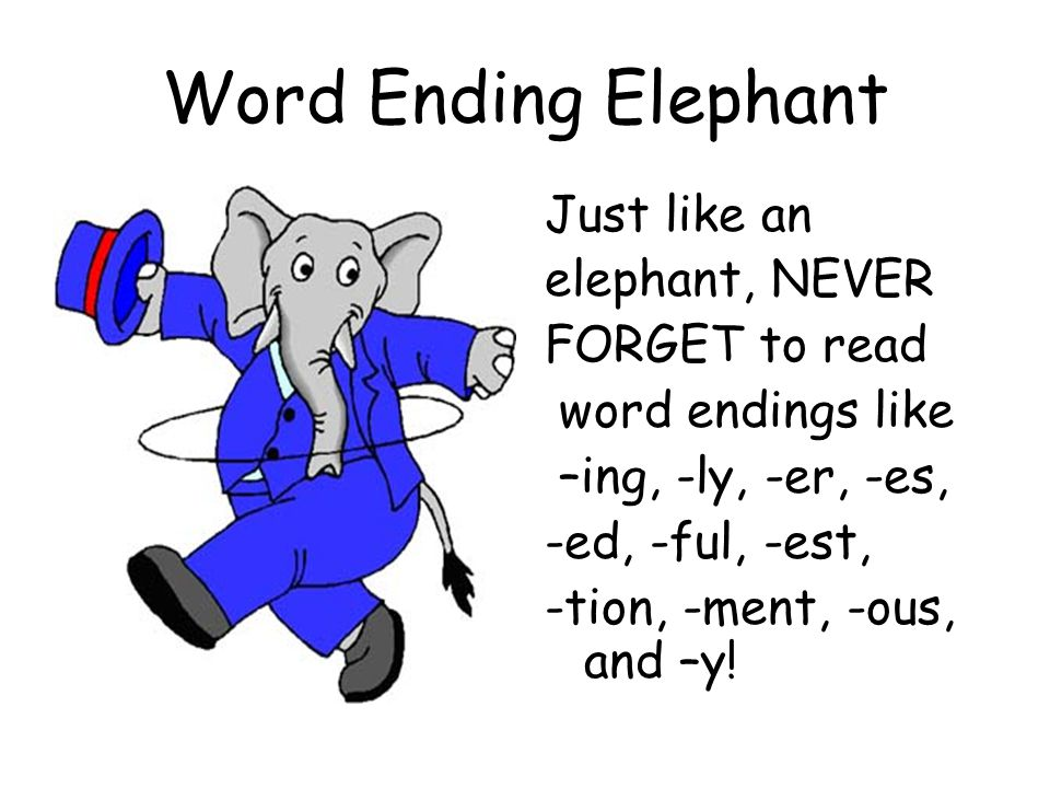 Word Ending Elephant Just like an elephant, NEVER FORGET to read word endings like –ing, -ly, -er, -es, -ed, -ful, -est, -tion, -ment, -ous, and –y!