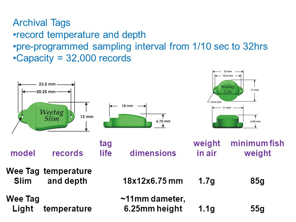 Archival Tags record temperature and depth pre-programmed sampling interval from 1/10 sec to 32hrs Capacity = 32,000 records modelrecords tag lifedime