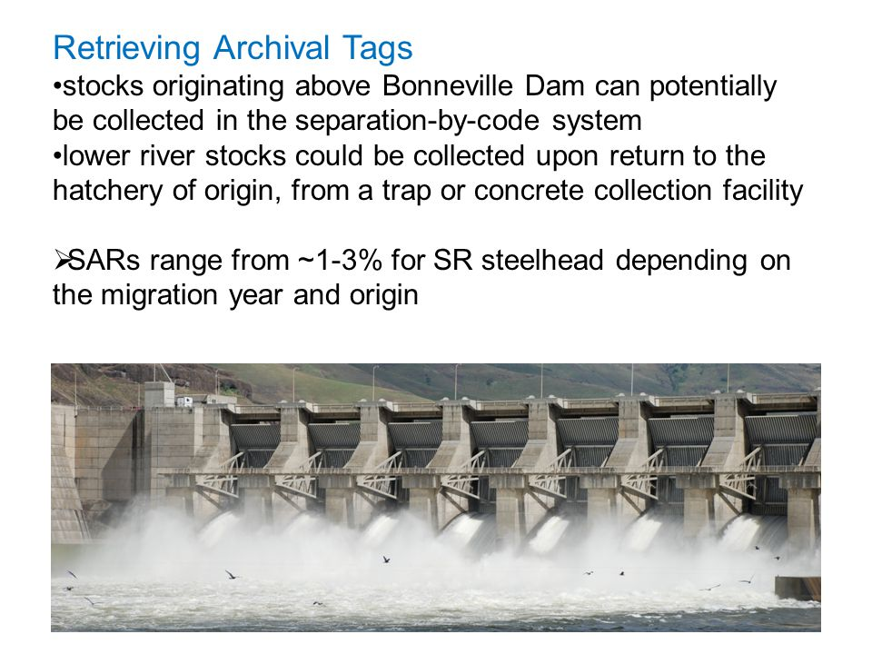 Retrieving Archival Tags stocks originating above Bonneville Dam can potentially be collected in the separation-by-code system lower river stocks coul