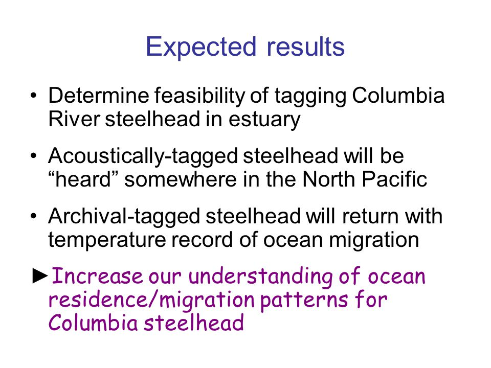 "Expected results Determine feasibility of tagging Columbia River steelhead in estuary Acoustically-tagged steelhead will be ""heard"" somewhere in the N"