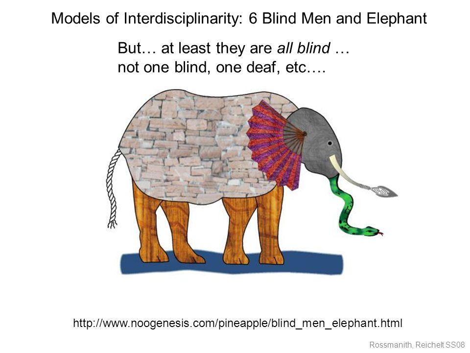 Rossmanith, Reichelt SS08 http://www.noogenesis.com/pineapple/blind_men_elephant.html Models of Interdisciplinarity: 6 Blind Men and Elephant But… at least they are all blind … not one blind, one deaf, etc….