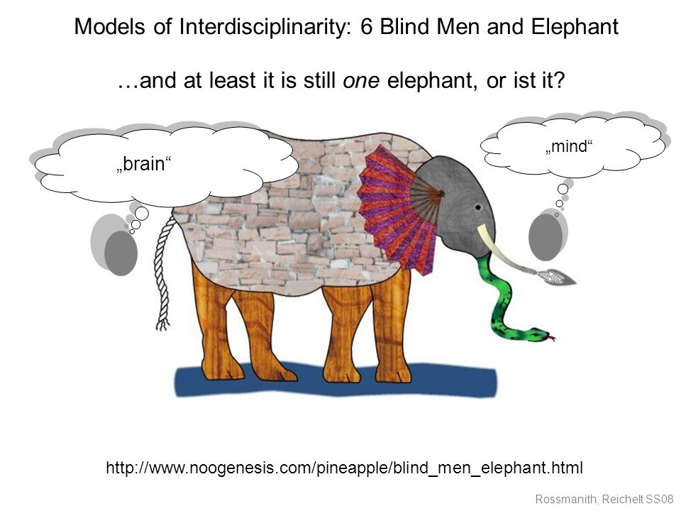 Rossmanith, Reichelt SS08 Models of Interdisciplinarity: 6 Blind Men and Elephant …and at least it is still one elephant, or ist it.