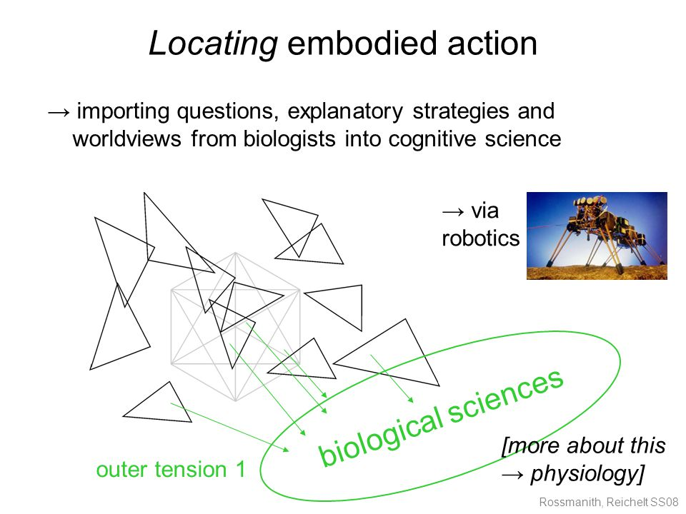 Rossmanith, Reichelt SS08 Locating embodied action → importing questions, explanatory strategies and worldviews from biologists into cognitive science biological sciences [more about this → physiology] outer tension 1 → via robotics
