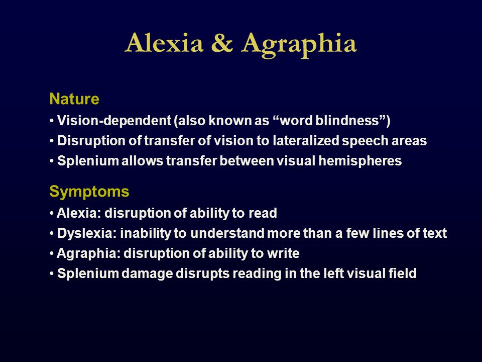 Alexia & Agraphia Nature Vision-dependent (also known as word blindness ) Disruption of transfer of vision to lateralized speech areas Splenium allows transfer between visual hemispheres Symptoms Alexia: disruption of ability to read Dyslexia: inability to understand more than a few lines of text Agraphia: disruption of ability to write Splenium damage disrupts reading in the left visual field