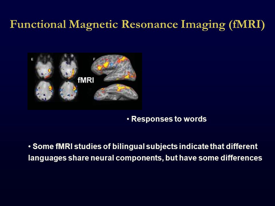 Functional Magnetic Resonance Imaging (fMRI) Responses to words Some fMRI studies of bilingual subjects indicate that different languages share neural components, but have some differences