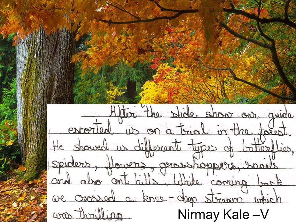 Nirmay Kale –V