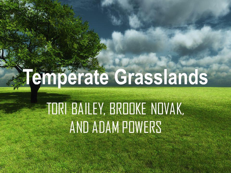 Temperate Grasslands TORI BAILEY, BROOKE NOVAK, AND ADAM POWERS