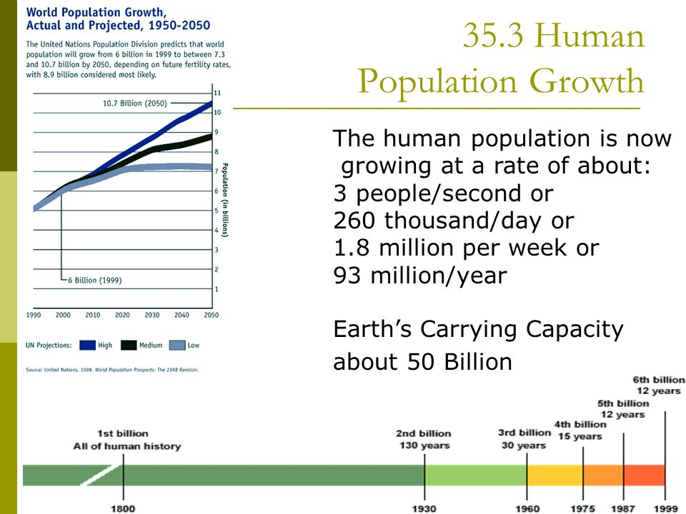 35.3 Human Population Growth  The human population is now growing at a rate of about: 3 people/second or 260 thousand/day or 1.8 million per week or