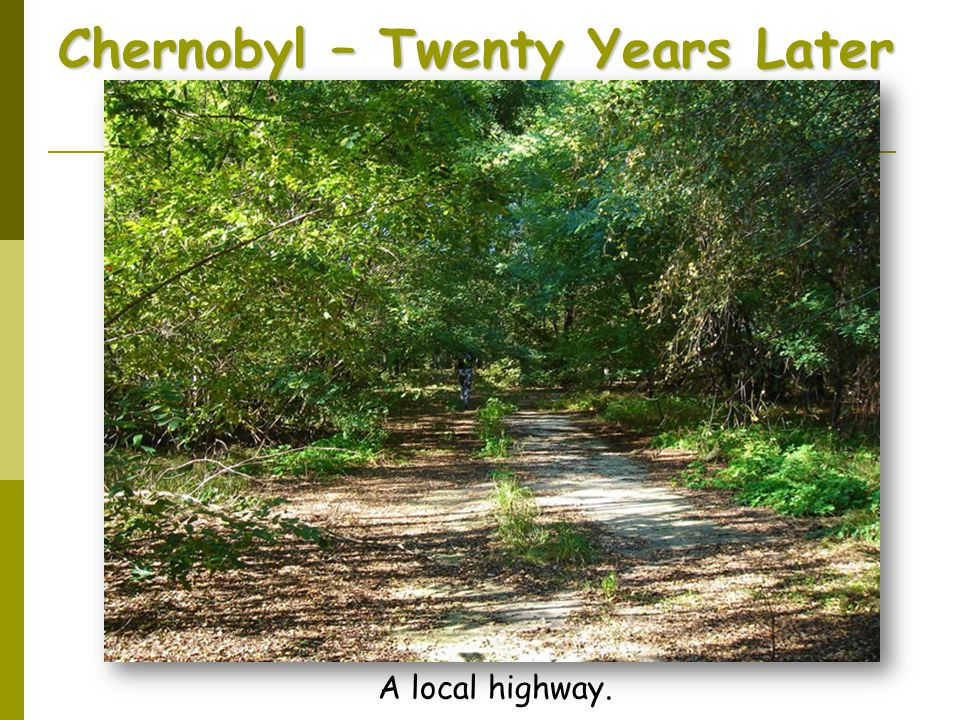 Chernobyl – Twenty Years Later A local highway.