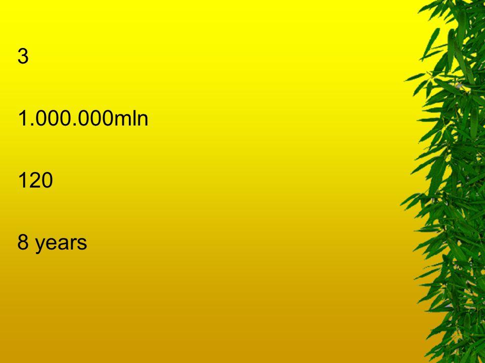 3 1.000.000mln 120 8 years