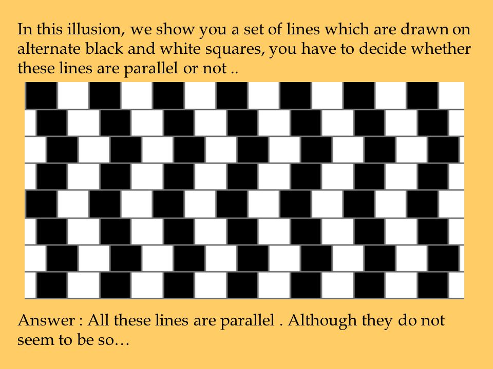 In the first optical illusion, we show you a black rectangle with various dots in the centre.