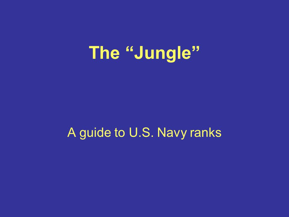 "The ""Jungle"" A guide to U.S. Navy ranks"