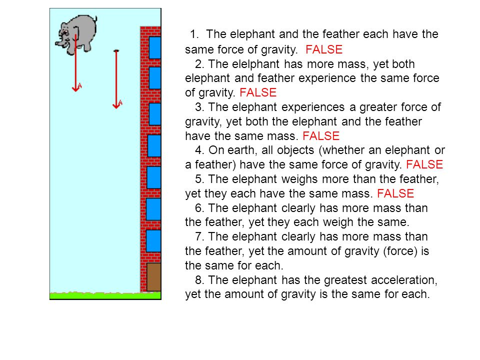 1. The elephant and the feather each have the same force of gravity. FALSE 2. The elelphant has more mass, yet both elephant and feather experience th