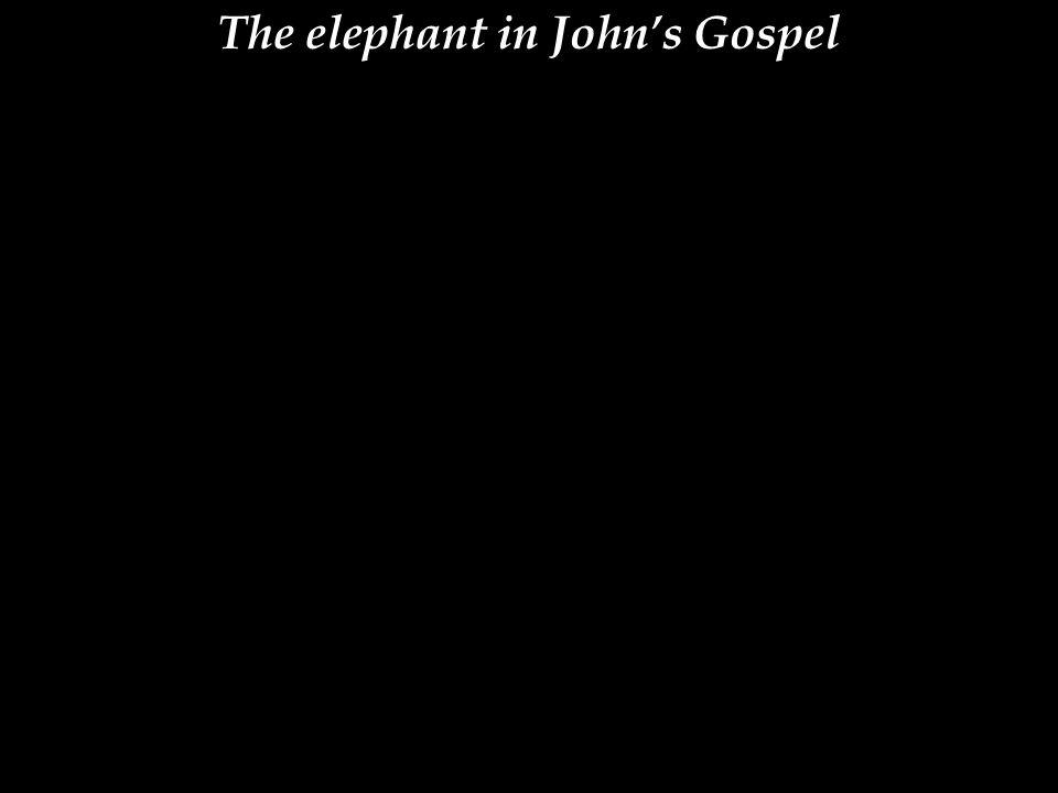 The elephant in John's Gospel