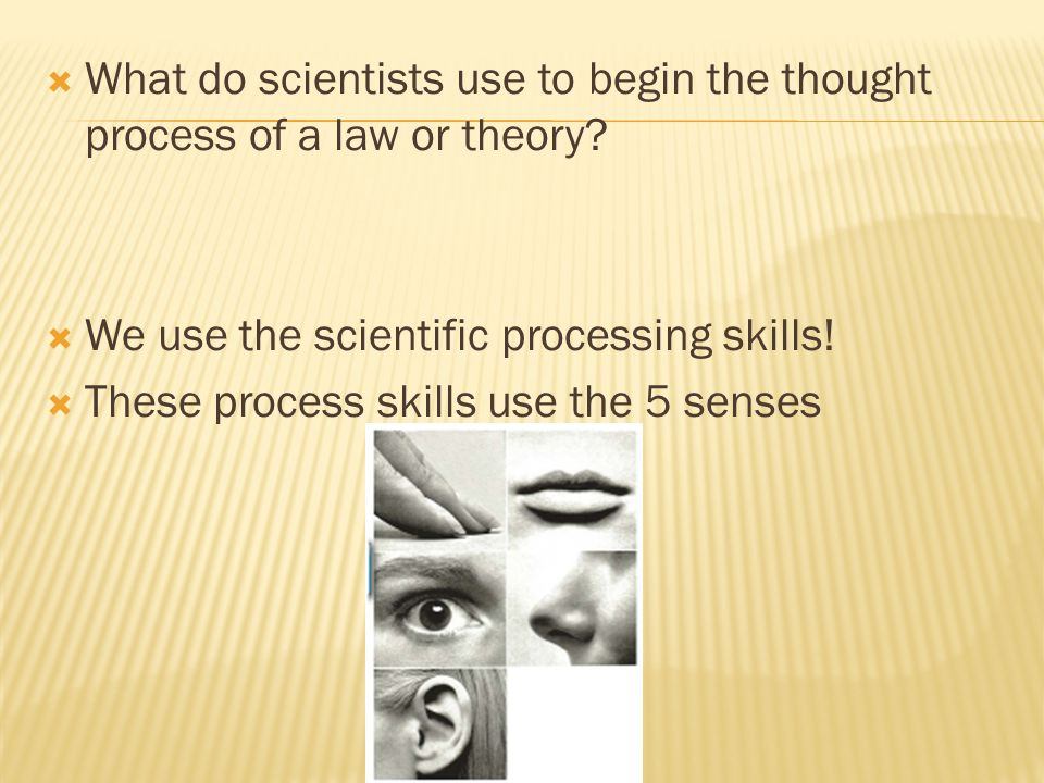 What do scientists use to begin the thought process of a law or theory.