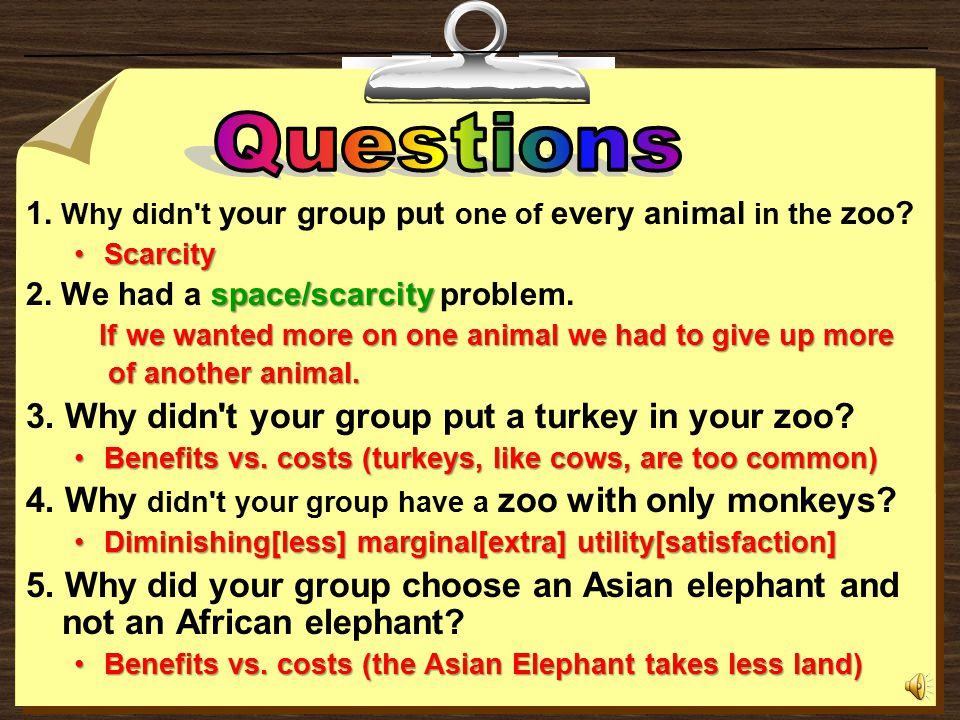 Two tigers Two seals Two Asian elephants Two monkeys To get you started here are some examples of what you might do.