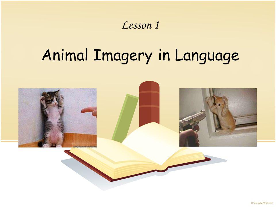 Links http://www.youtube.com/watch?v=6US4d2OqtEM http://www.youtube.com/watch?v=Gw0FU733zzg That's my cat!