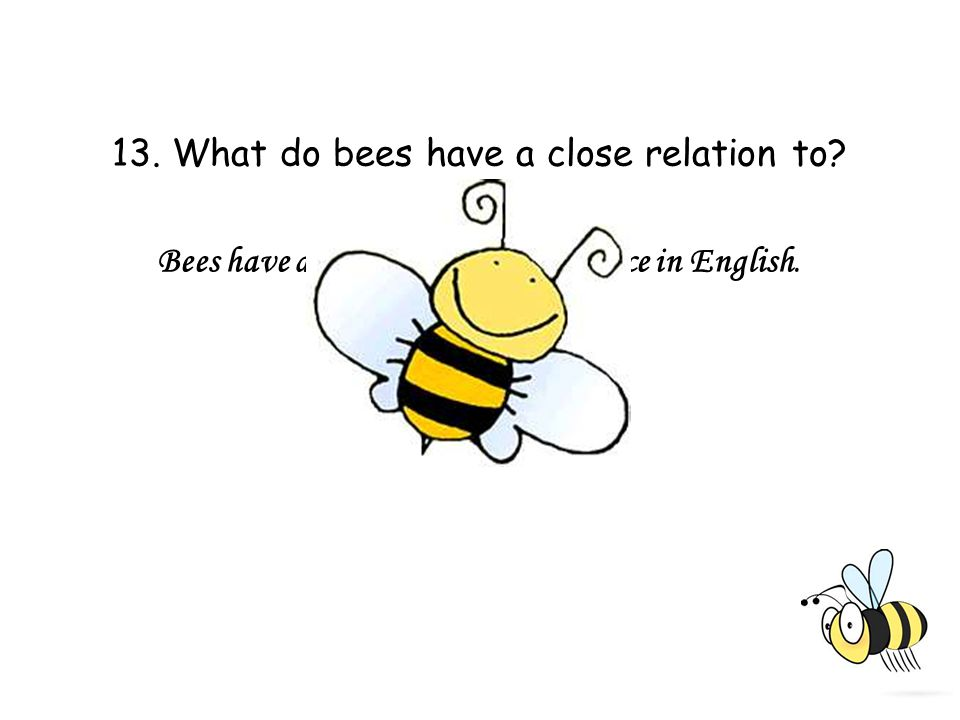 13. What do bees have a close relation to Bees have a close relation to diligence in English.