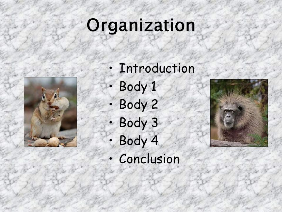 Organization Introduction Body 1 Body 2 Body 3 Body 4 Conclusion