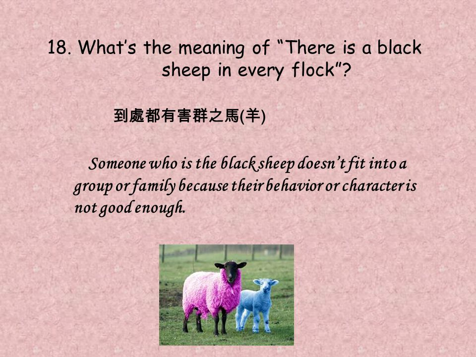 18. What's the meaning of There is a black sheep in every flock .